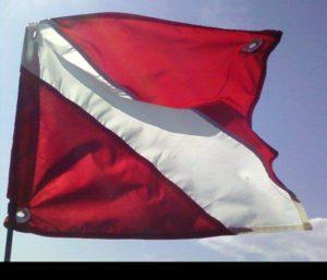 Steinhatchee Scalloping Flag