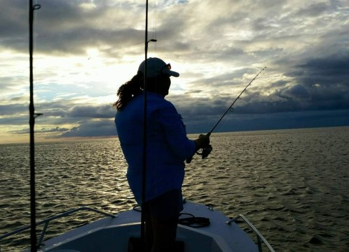 Fall Fishing in Gulf coast of Florida